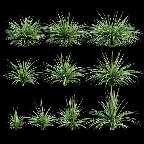 plants for the exterior 3d model max obj mtl fbx 1