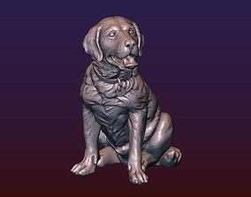 3D print model Labrador