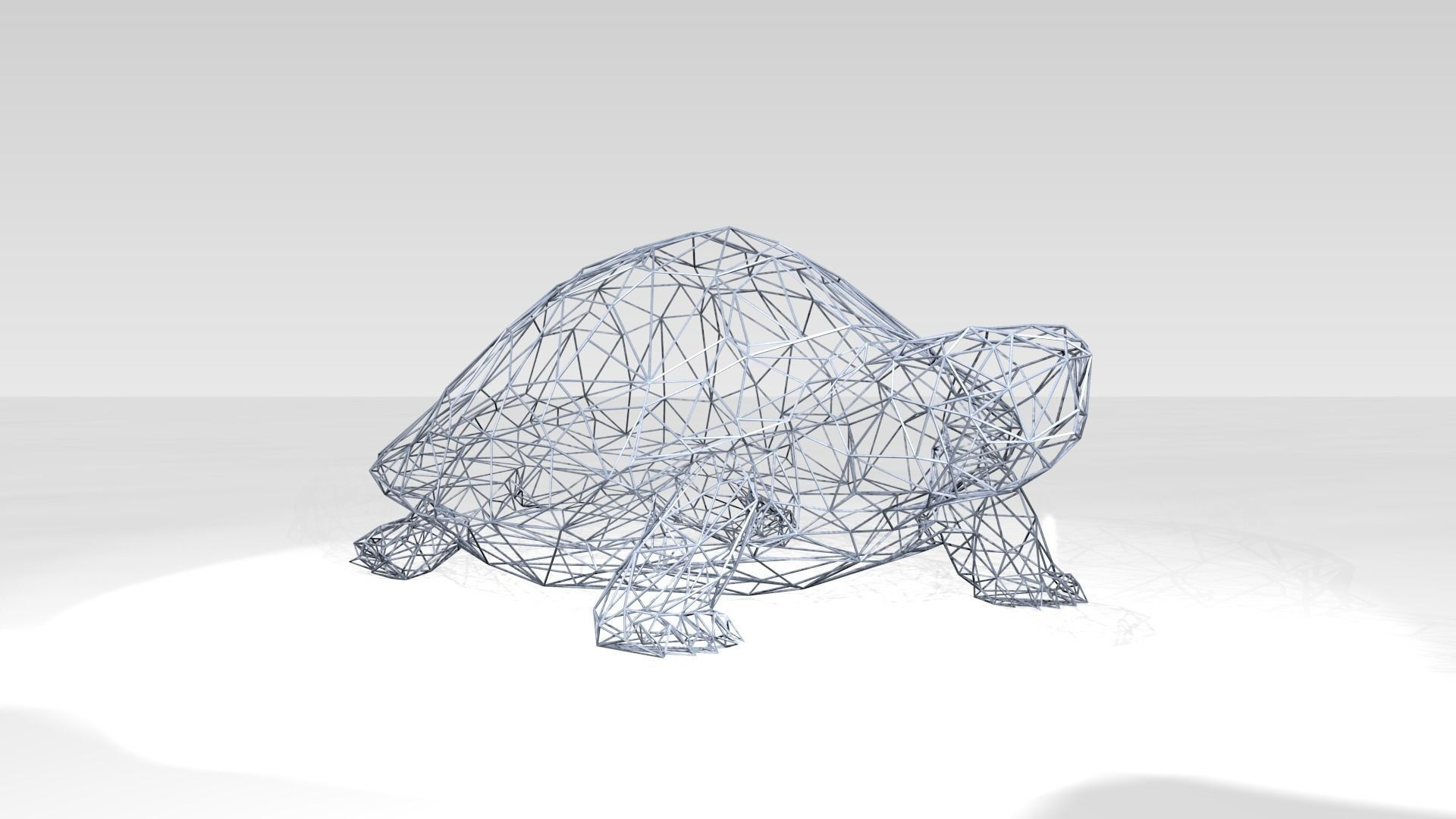 Wire Frame Turtle Wire Sea Turtles - Wire Diagrams
