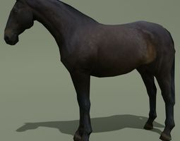 3D model LowPoly Horse E Dark Bay