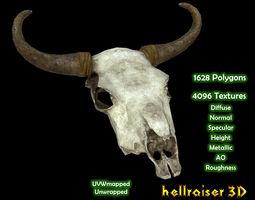 Cow Skull - Textured 3D model
