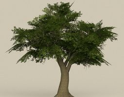 3D model Game Ready Tree 08