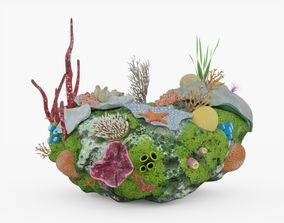 3D model game-ready Coral Reef