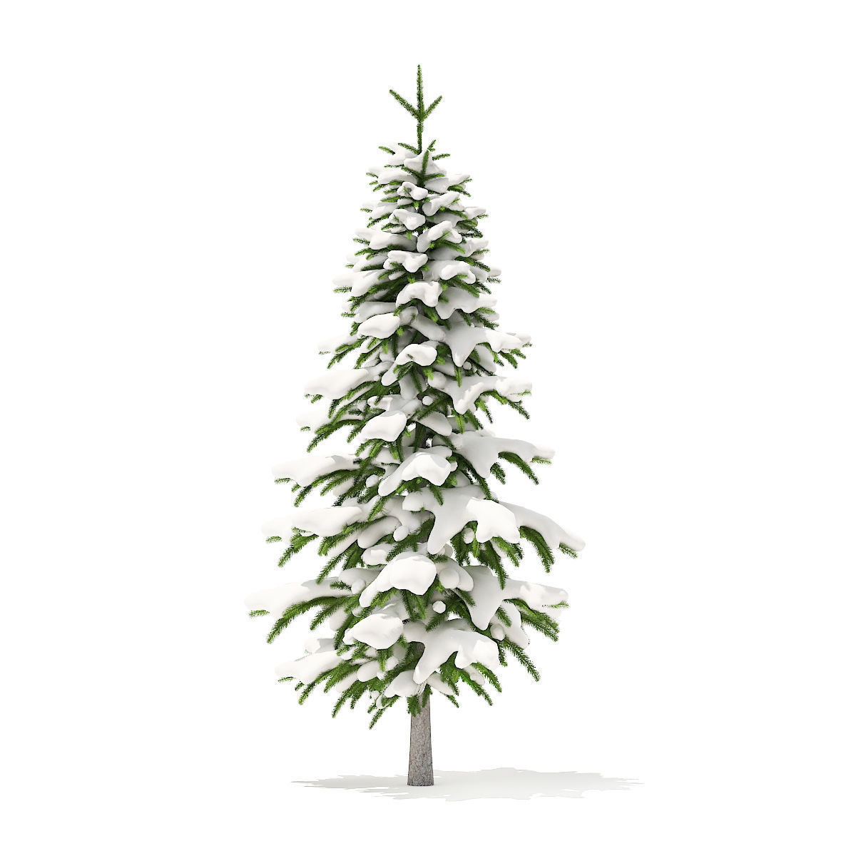 Fir Tree with Snow 2point6m