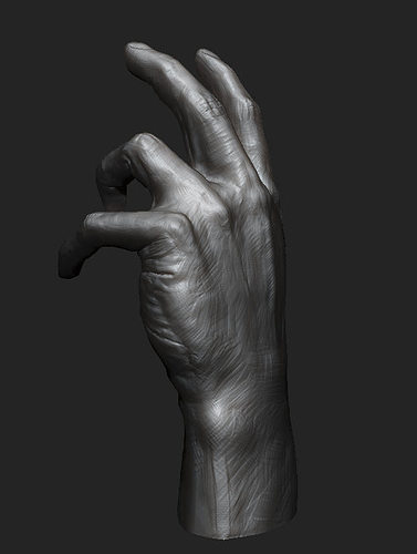 hand study 3d model obj 1