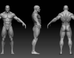 muscular male body 3d asset low-poly