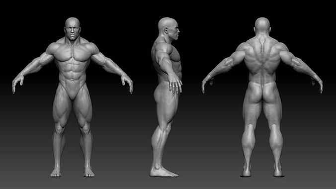 muscular male body 3d model low-poly obj mtl fbx ztl 1