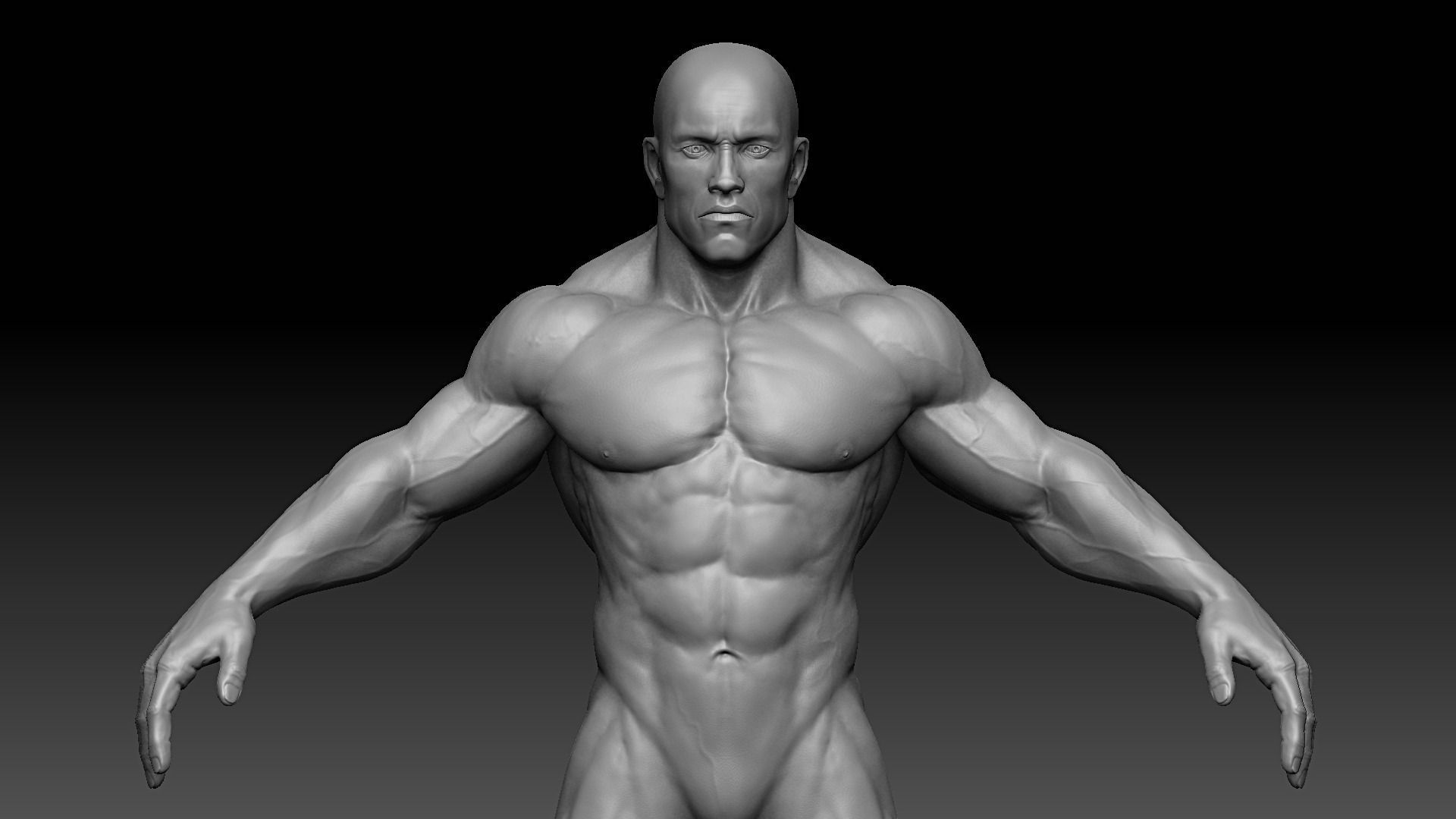 Muscular Male Body 3d Asset Cgtrader