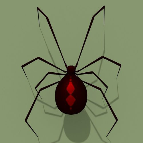 black widow spider 3d model obj mtl 3ds fbx ma mb blend 1