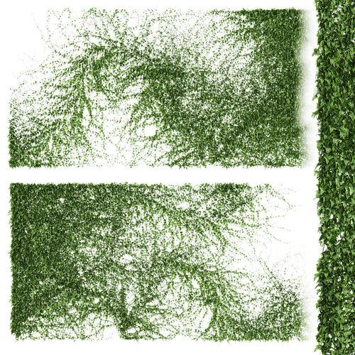 set of 2 ivy patterns for walls or fence 3d model max obj mtl fbx 1