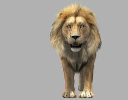 3D Lion animation