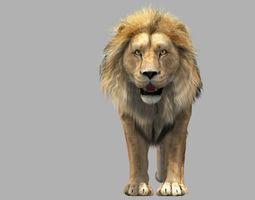 3D Lion animation