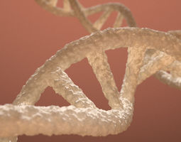 rigged DNA Double Helix 3D model