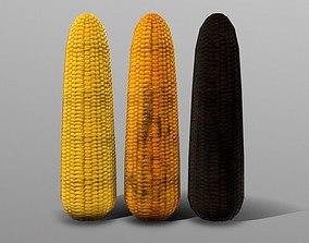 3D asset Corn Cob