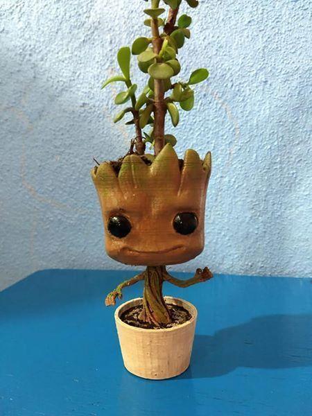 gruu plant pot