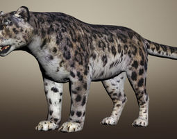 rigged Snow Leopard Animated 3D model