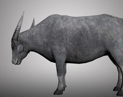 Asia Buffalo 3D model for 3ds Max low-poly 3D rigged