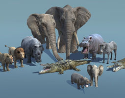 low poly African Animal Pack 1 game 3D asset