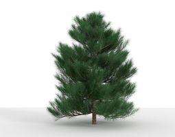 Epic Pine Tree 1 3D model