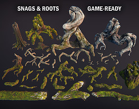 Snags and roots 3D asset