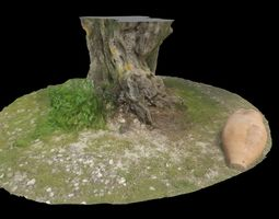 3D model ANCIENT 1800 YEARS TREE TRUNK