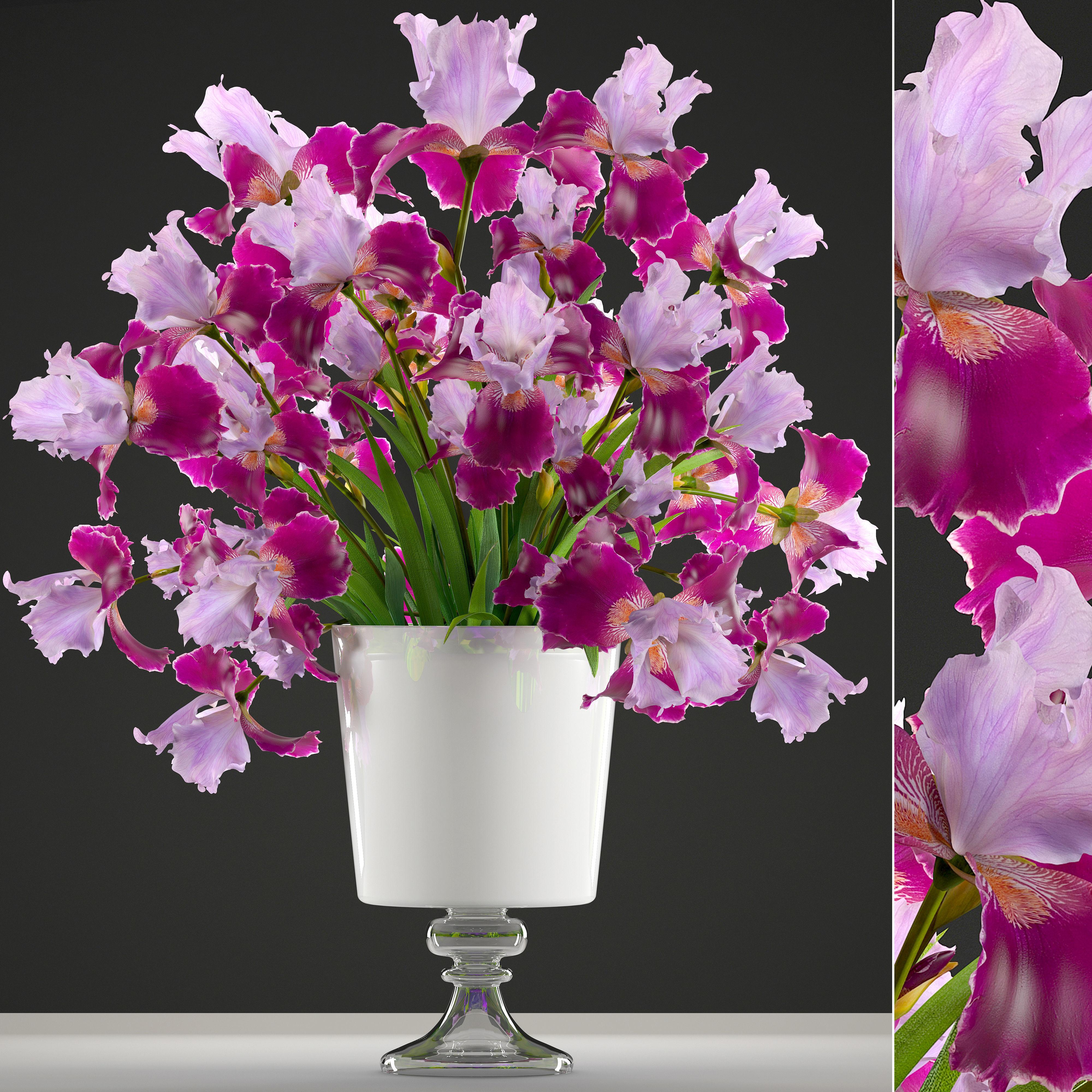 Flower bouquet of iris 3d model flower bouquet of iris 3d model max obj mtl fbx 1 izmirmasajfo