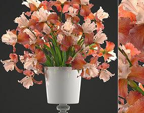 3D model Flower bouquet iris