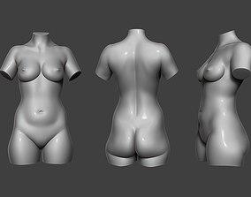 3D model Female Torso 12