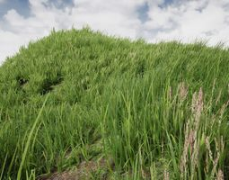 interactive optimized Grass Library 3D model
