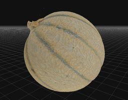 Charentais Cantaloupe 3D asset
