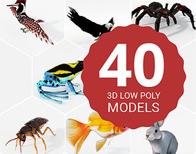 40 Models Animal Pack - Collection low-poly