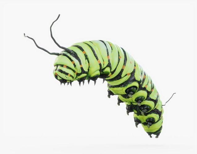 caterpillar 02 rigged 3d model rigged obj mtl 3ds fbx stl blend dae 1