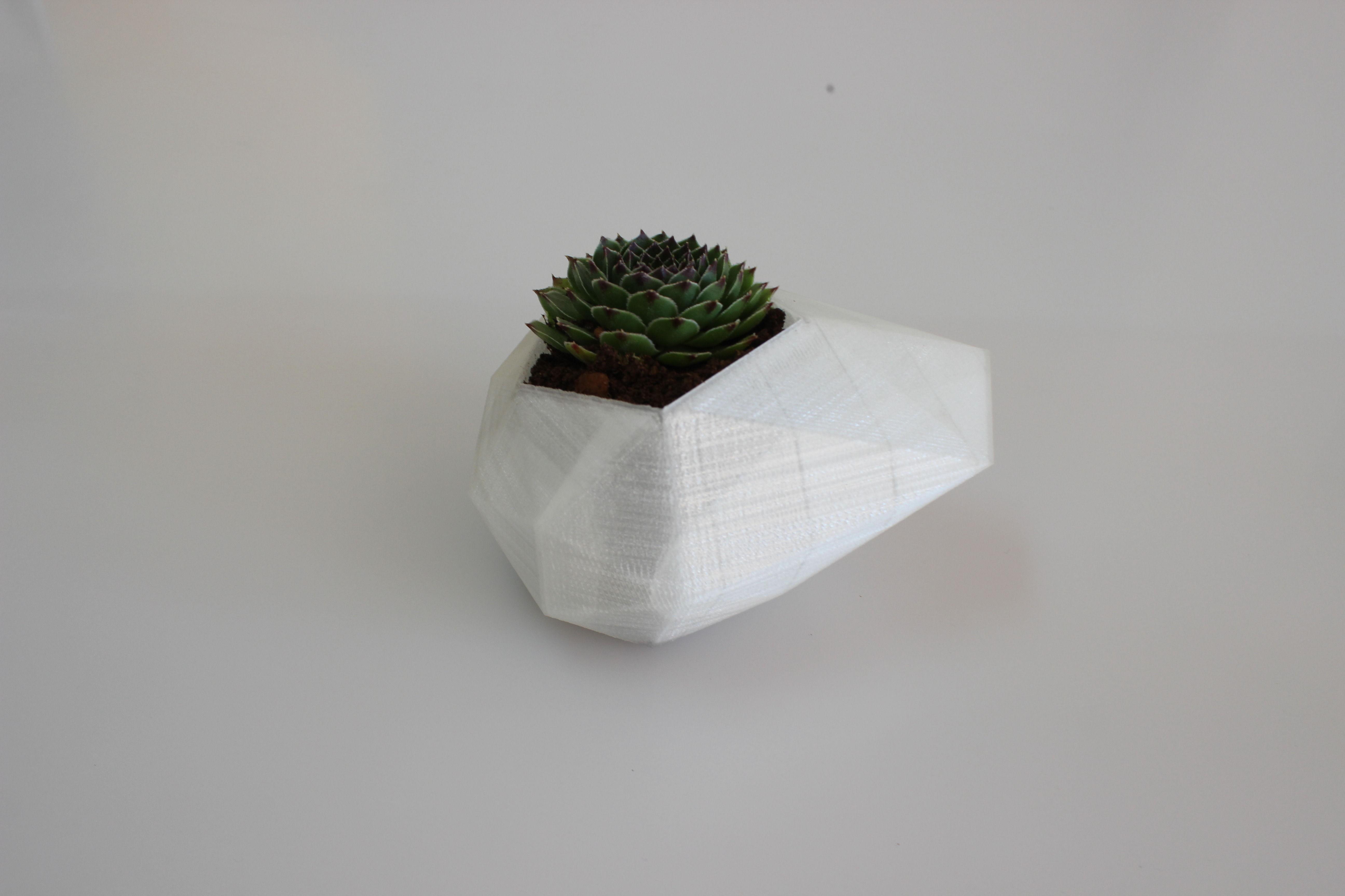 Flower Pot Free 3d Model 3d Printable Stl Cgtrader Com
