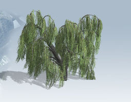 weeping willow tree set game-ready 3d asset