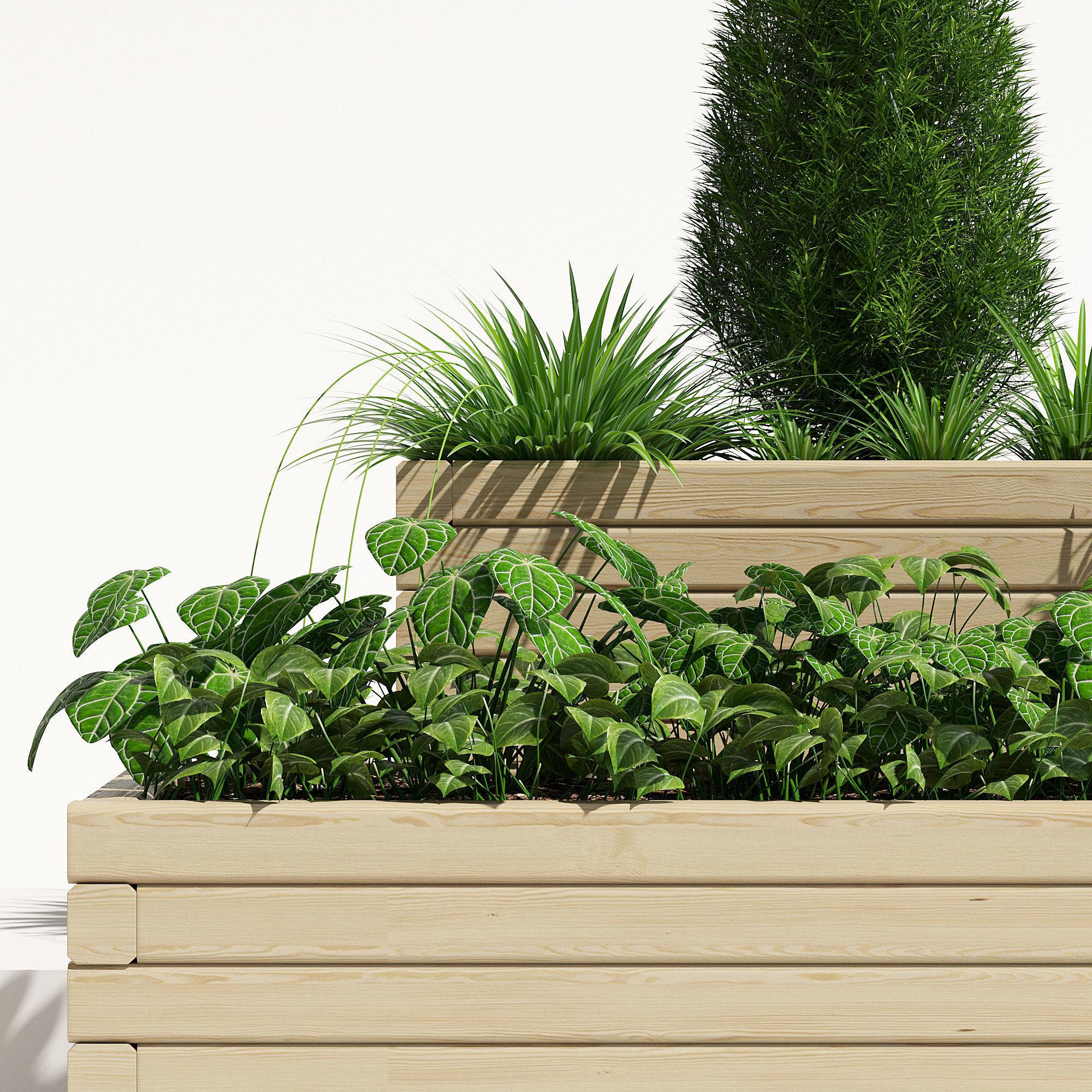 Wooden Pine Trough Planter 1   3D model