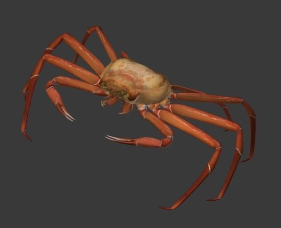 snow crab 3d model rigged animated blend 1