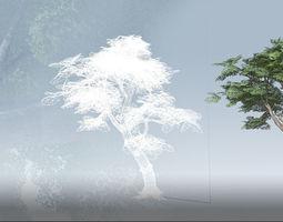 Kapok Tree Set - Jungle 3D Model