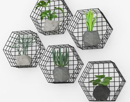 3D model Plants Wall