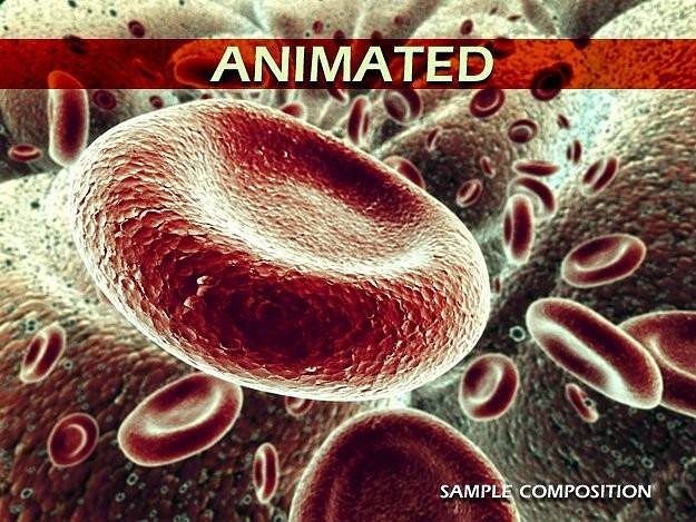 red blood cells animated 3d model rigged animated max obj 3ds 1
