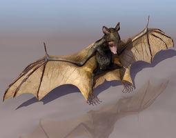 Bat Mammal 3D model