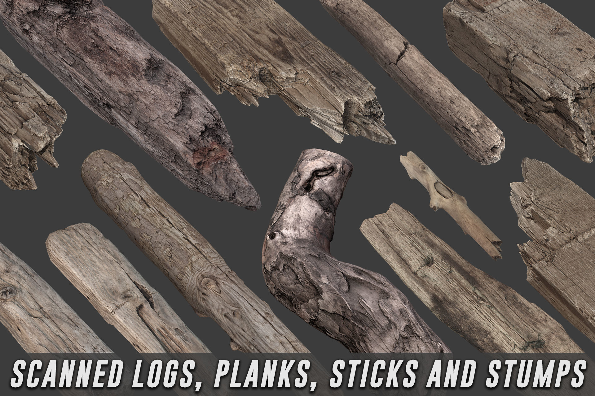 Scanned Logs Planks Sticks and Stumps