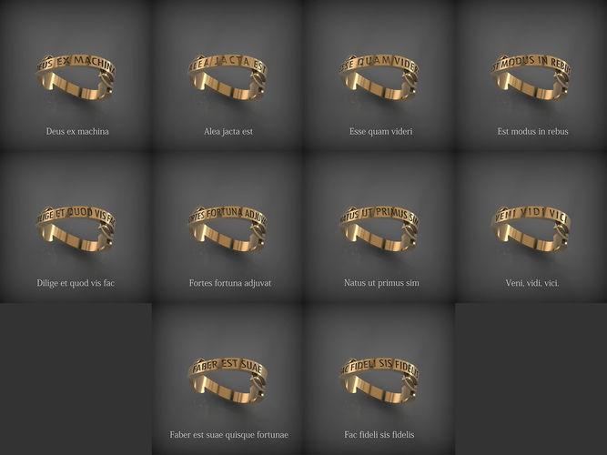 rings of wisdom 3d model stl 1
