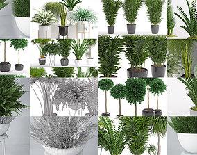 Plants collection 02 3D