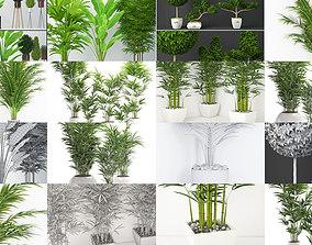 Plants collection 03 3D