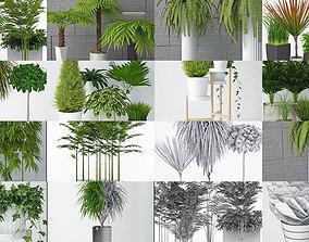 Plants collection 04 3D