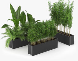 Flowerbed Palm Three 3D