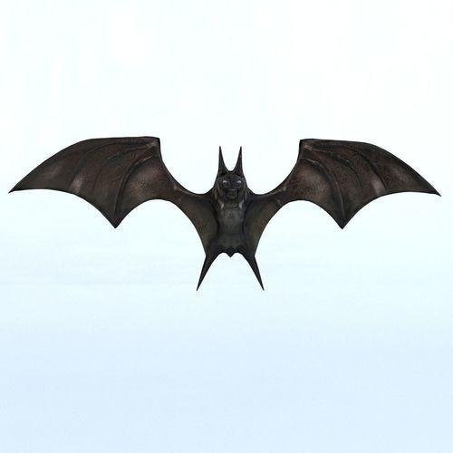 bat mammal bird 3d model max obj mtl 1