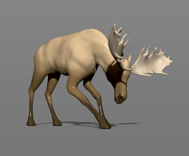 young moose 3d model obj mtl fbx stl ztl 1