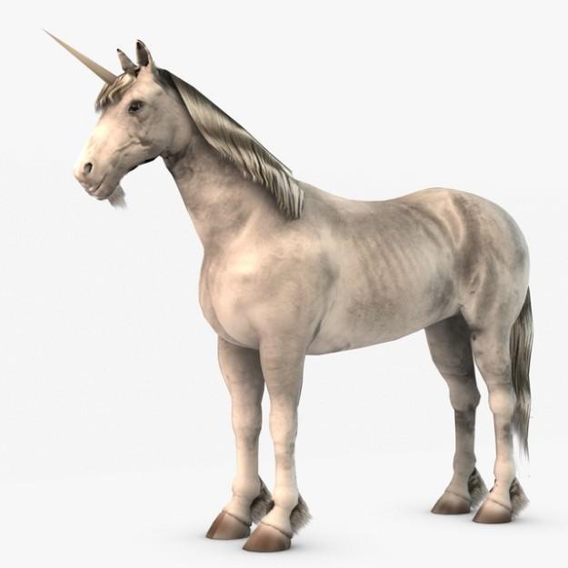 unicorn horse 3d digital - photo #27