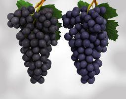 Grapes Black and Blue 3D Model